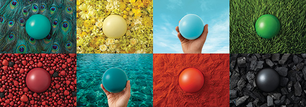 Nature-inspired playground colors