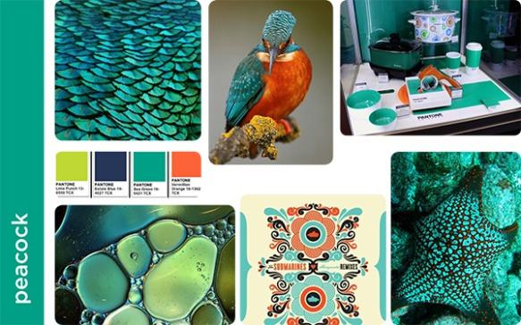Peacock mood board